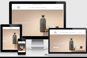 Portfolio for Web Development | Web Design