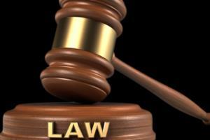 Portfolio for Legal & Academic Content Writer