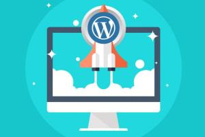 Portfolio for Advanced WordPress Speed Optimization