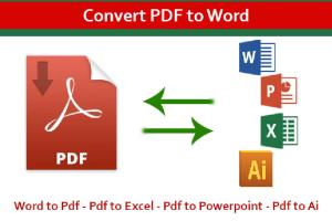 Portfolio for Conversion from PDF to Word || Excel