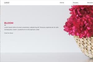 Portfolio for Front End Developper (Website Designer)