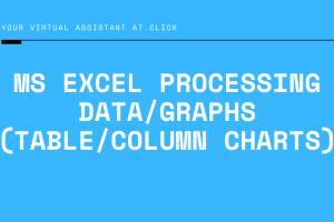 Portfolio for MS Excel Workbook Creation