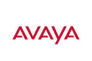 Portfolio for Avaya Implementation / Support