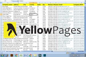 Portfolio for Scrap yellow pages business data.