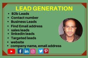 Portfolio for Targeted  affordable B2B lead generation