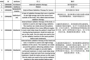 Portfolio for English to Chinese Translation