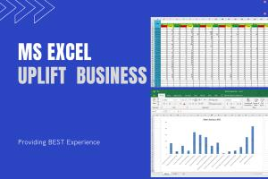 Portfolio for MS Excel Data Entry and Web Scraping