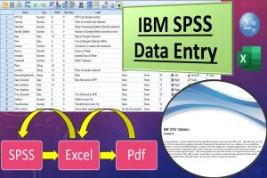 Portfolio for IBM SPSS Data Entry