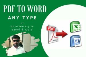 Portfolio for Convert PDF to word