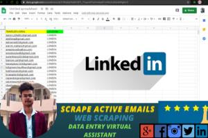 Portfolio for Scrape Targeted Emails from Social Media