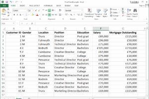 Portfolio for Data entry on excel , pdf conversion