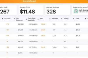 Portfolio for Amazon Virtual Assistant| A-Z Consultant