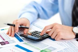 Portfolio for Chartered Accountant I Consultant
