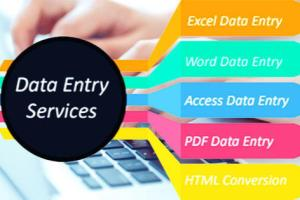 Portfolio for Data Entry clerk and translator