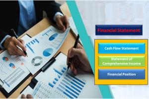 Portfolio for Financial statements of  P&L, B/S