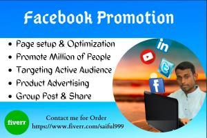 Portfolio for Facebook Promotion Service