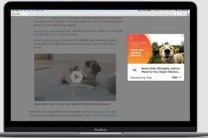 Portfolio for Digital Ads