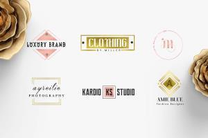 Portfolio for Amazing Elegant Logo Design