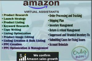 Portfolio for Your expert Amazon Virtual Assistant