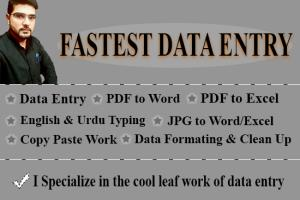 Portfolio for I Will do Data Entry, Copy Paste Work