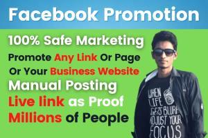 Portfolio for I will do facebook promotion
