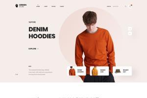 Portfolio for Expert UI UX Designer - web/app designer