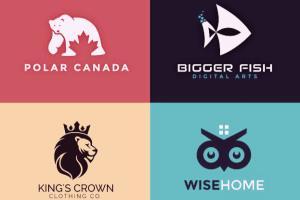 Portfolio for I will do luxury logo design