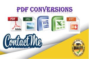 Portfolio for An Expert in PDF conversion In 24hours