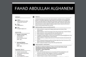Portfolio for I will do Professional CV, Resume design