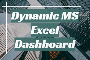 Portfolio for Dynamic MS Excel Dashboard