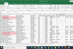 Portfolio for PDF to Excel Conversion | Convert a PDF