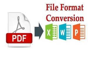 Portfolio for PDF Converter into MS Word/MS Excel