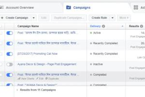 Portfolio for Facebook Manager